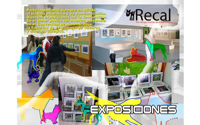 Exposición de Recal